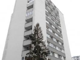 GARCONNIERE FÜR SINGLES - WELS / NEUSTADT
